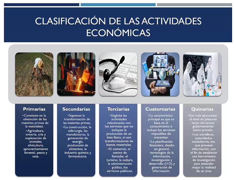 Clasificación de las actividades económicas