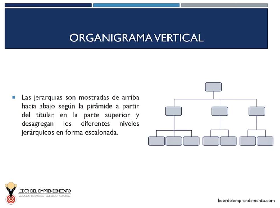 Organigrama vertical