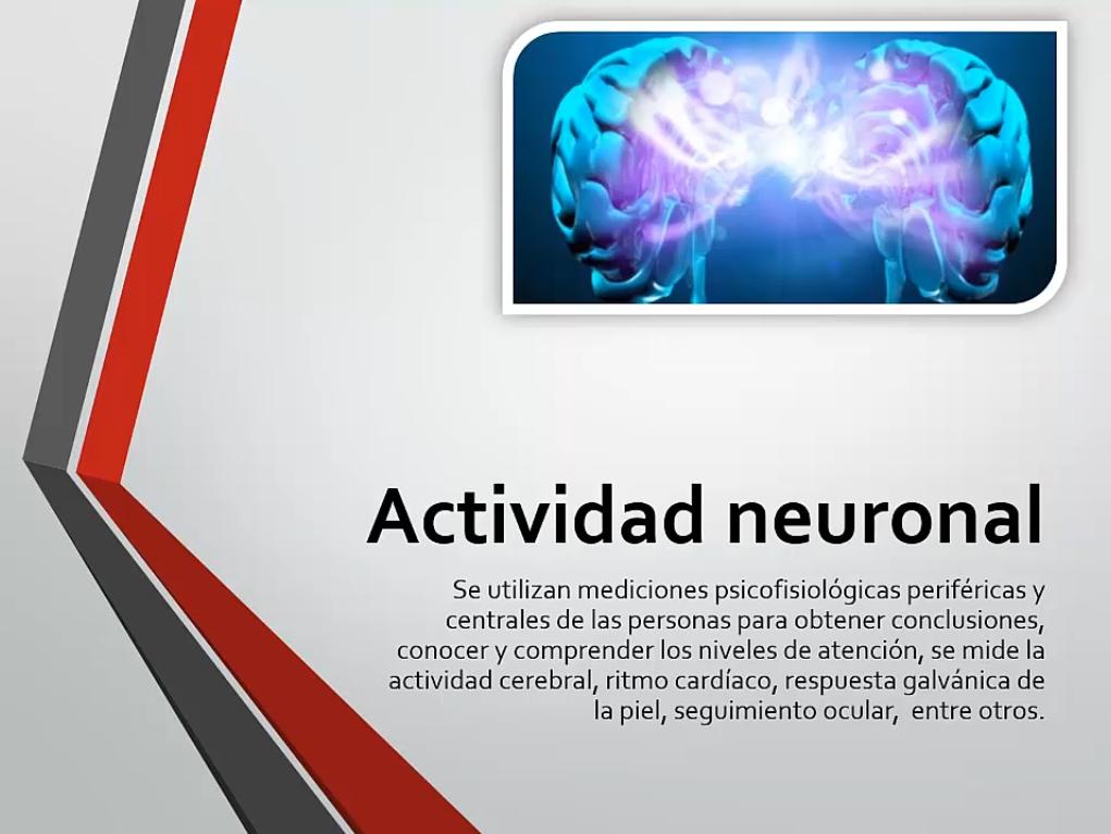 El neuromarketing y la actividad neuronal