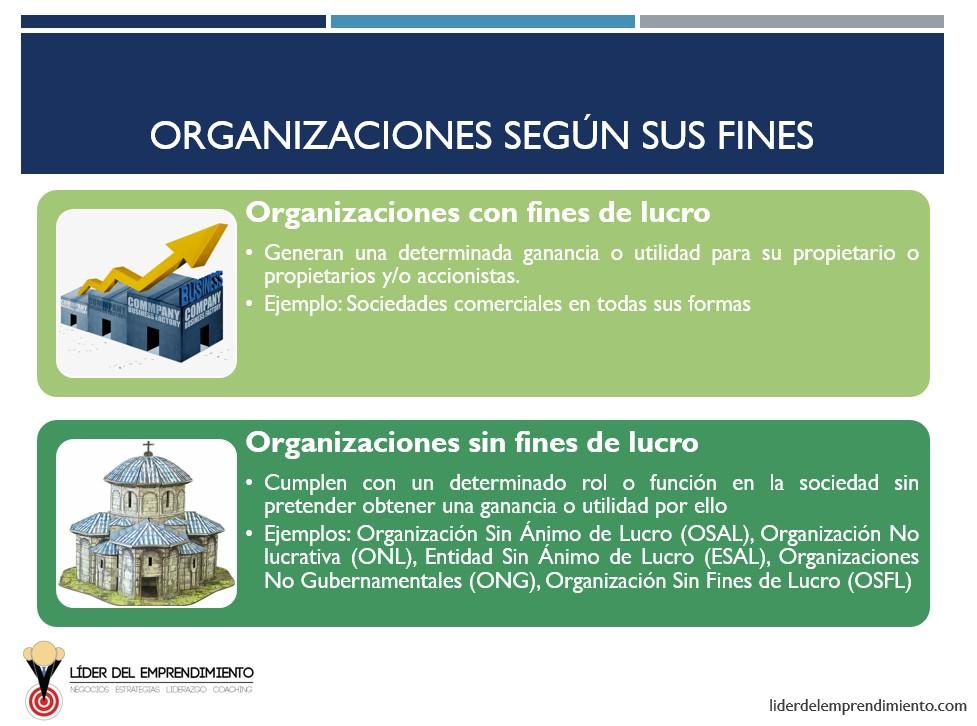 Tipos de organizaciones según sus fines